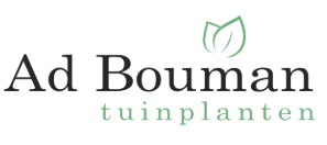 Ad Bouman Tuinplanten